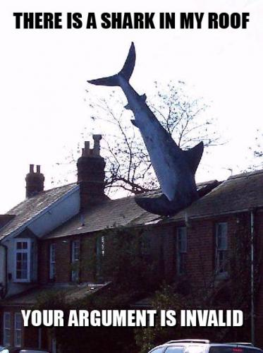 There is a shark in my roof.  Your argument is invalid.